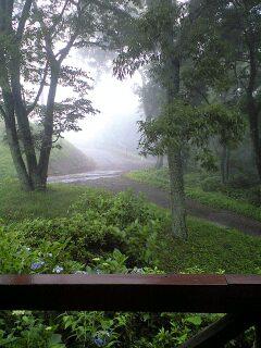 雨にけぶる道