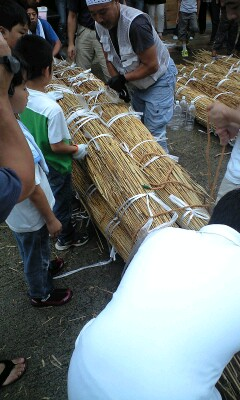 葦船プロジェクト・3