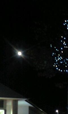 月夜のドライブ