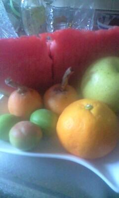 梅の酵素つくり