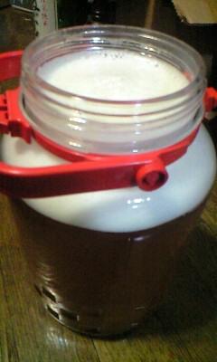 梅の酵素ジュース