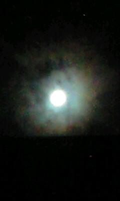 月と仲良し