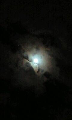 満月近し♪