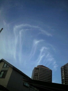 今日の空*虹