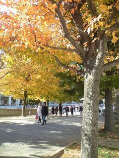 秋のアート日和♪