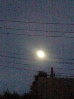 台風一過の栗名月