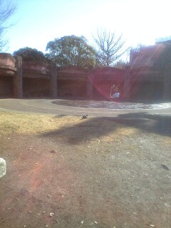 縄文遺跡の公園