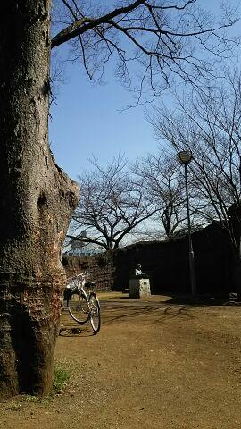 久しぶりの縄文公園