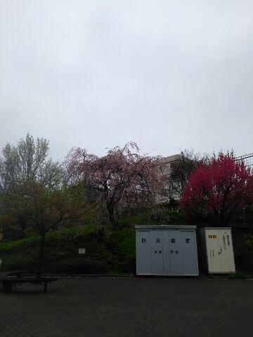 日本列島が揺れる