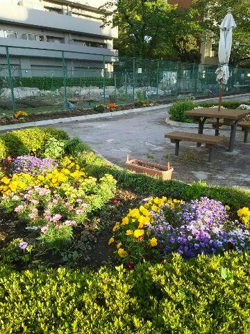 花真っ盛り*立夏の今日